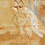Image of an owl in an ancient egyptian temple symbolizing the letter 'M'