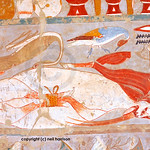 Ancient Egyptian meat including cranes, ducks geese, and beef