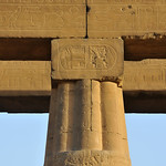 Closed Lotus column capital, abacus and archetrave with hieroglyphs at the 3000 year old Luxor Temple in Egypt